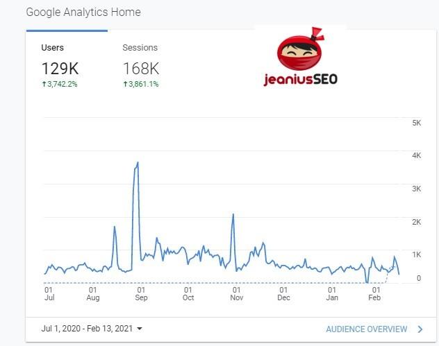 Jeanius SEO Google Result